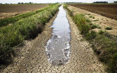 Está poupar água? E a baixar a fatura?